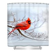 Img 2559-21 Shower Curtain