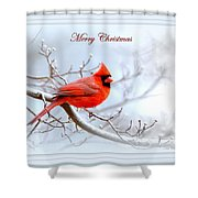 Img 2559-29 Shower Curtain