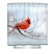 Img 2559-35 Shower Curtain