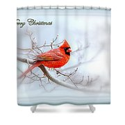 Img 2559-37 Shower Curtain