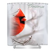 Img 2559-40 Shower Curtain