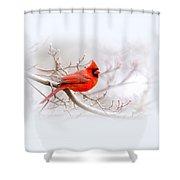 Img 2559-7 Shower Curtain