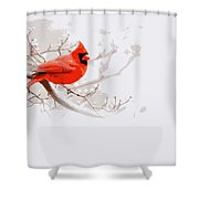 Img 2559-9 Shower Curtain
