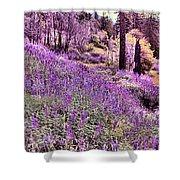 Img 4892_ Purple Lupine_ Yosemite National Park  Shower Curtain