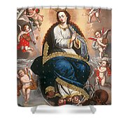 Immaculate Virgin Victorious Over The Serpent Of Heresy Shower Curtain