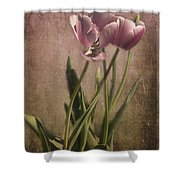 Imperfect Beauty Shower Curtain