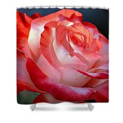 Imperfect Rose Shower Curtain