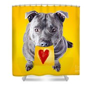 Imploring Staffie With A Sticky Note On His Mouth Shower Curtain