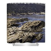 Imposing Inlet Shower Curtain