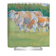 Impressionist Cow Calf Painting Shower Curtain