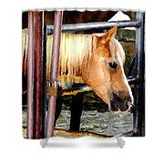 Impressionist Horse Shower Curtain