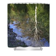 Impressionist Reflections Shower Curtain