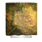 Impressionistic Rose Shower Curtain