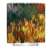 Impressionists Autumn Shower Curtain