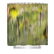Impressions Of Autumn Shower Curtain
