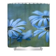 In A Corner Of A Garden Shower Curtain by Priska Wettstein