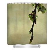 In A Dark And Silent Place Shower Curtain