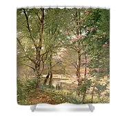 In A Fairy Woodland Shower Curtain