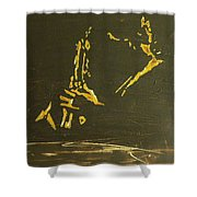 In A Sentimental Mood Shower Curtain