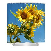 In All Their Glory Shower Curtain
