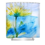 In All Your Glory Shower Curtain