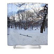 In Central Park Shower Curtain