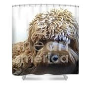 In Deep Thought Shower Curtain