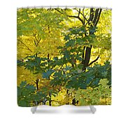 In Due Time Shower Curtain