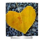 In Love ... Shower Curtain by Juergen Weiss