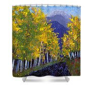 In Love With Fall River Road Shower Curtain