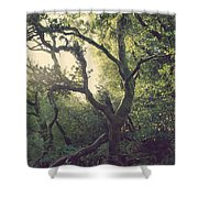 In Our Own Little Magical World Shower Curtain