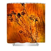 In Praise Of Weeds Shower Curtain