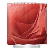 In Preparation For My Valentine Shower Curtain