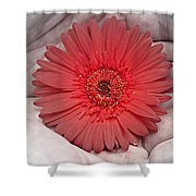 In Strong Hands Shower Curtain