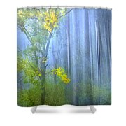 In The Blue Forest Shower Curtain