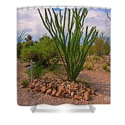 In The Boothill Cemetary Shower Curtain
