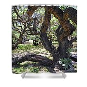 In The Depth Of Enchanting Forest Iv Shower Curtain