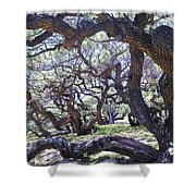 In The Depth Of Enchanting Forest Shower Curtain