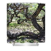 In The Depth Of Enchanting Forest V Shower Curtain