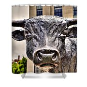 In The Eyes Of The Bull Shower Curtain