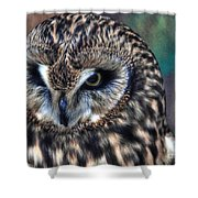 In The Eyes Of The Owl Shower Curtain