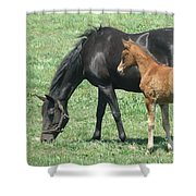 In The Field Shower Curtain
