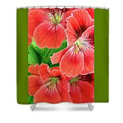 In The Garden. Geranium Shower Curtain