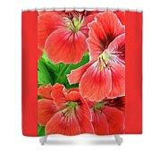 In The Garden. Geranium Shower Curtain