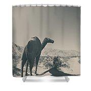 In The Hot Desert Sun Shower Curtain