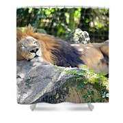 In The Jungle The Mighty Jungle Shower Curtain