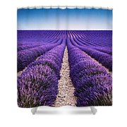 In The Lavender Shower Curtain