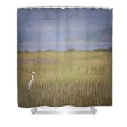 In The Marsh  Shower Curtain