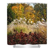 In The Meadow 2 Shower Curtain