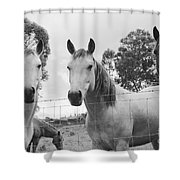 In The Open Air . . .  Shower Curtain